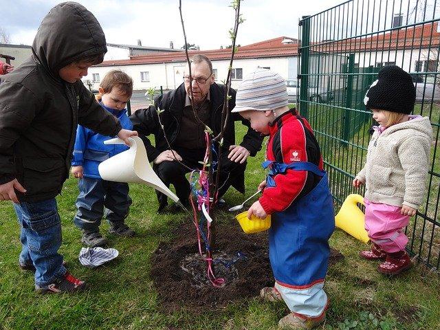 děti sázejí stromek