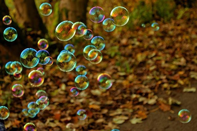 bubliny z bublifuku v lese
