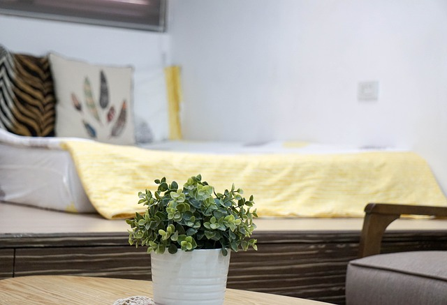 kytička na stole