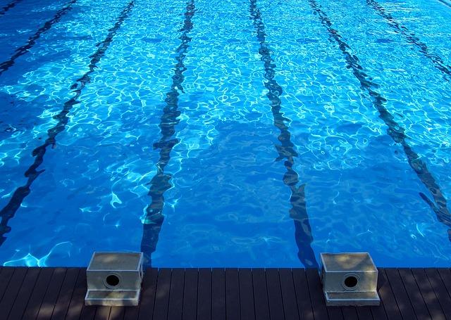 skokánky u bazénu