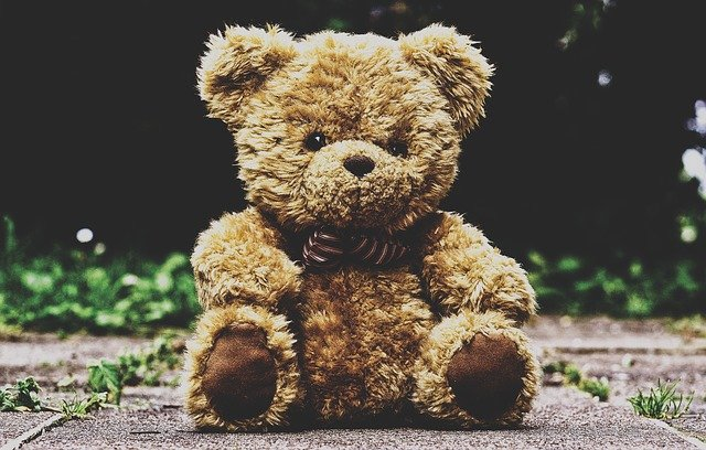 chlupatý medvídek